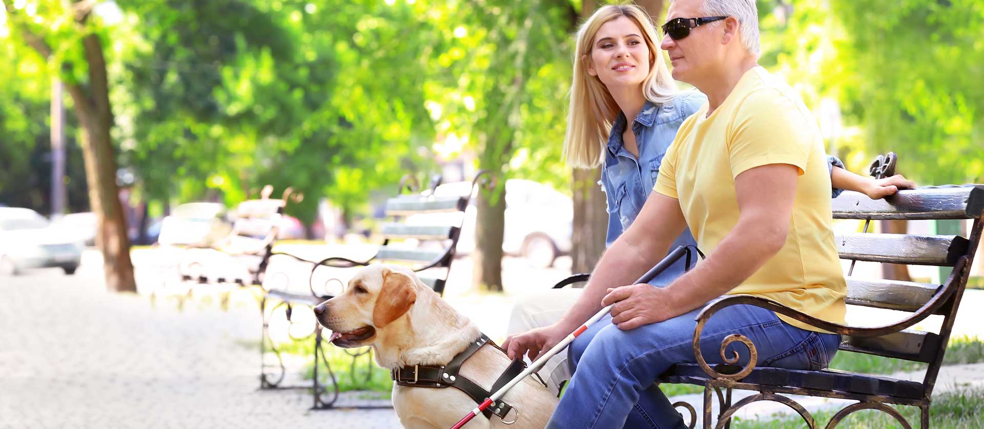 A man and woman sit on a park bench. The man is holding a walking cane and has a guide dog.